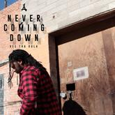Vee Tha Rula - Never Coming Down