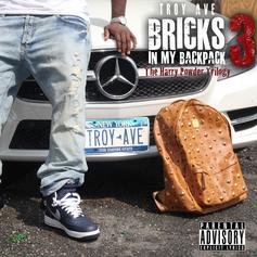 Bricks In My Backpack 3:The Harry Powder Trilogy
