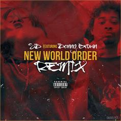 New World Order (Remix)