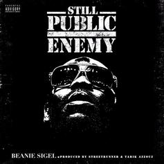 Still Public Enemy
