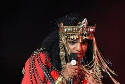 M.I.A. Reportedly Will Have To Pay Fine For Super Bowl Incident