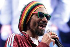 """Snoop Lion/Dogg To Release Reggae Album """"Reincarnated"""" With RCA Records"""