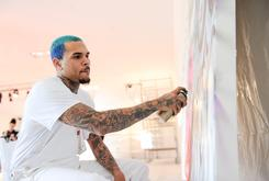 Chris Brown Ethers TMZ Over Gay Pride Weekend Headline