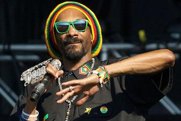 Roots Picnic 2014 Announce Snoop Dogg, Jhene Aiko, Action Bronson & More To Perform