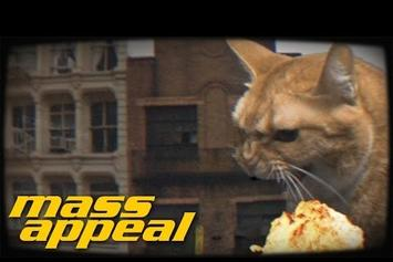 "Run The Jewels Feat. Just Blaze ""Oh My Darling Don't Meow"" Video"