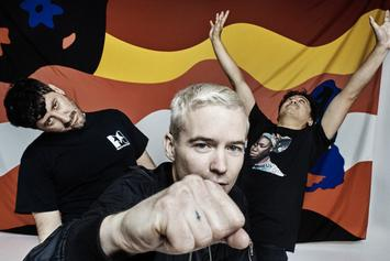 """Stream The Avalanches First Album In 16 Years """"Wildflower"""""""